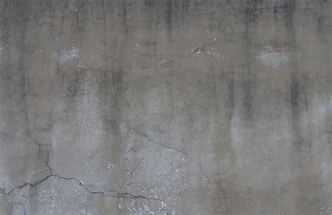 concrete wall concrete texturify  textures