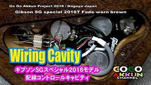 Sg Special 2016t  Uff5ewiring Cavity  U2605 U30ae U30d6 U30bd U30f3  U30b3 U30f3 U30c8 U30ed U30fc U30eb U30ad U30e3 U30d3 U30c6 U30a3