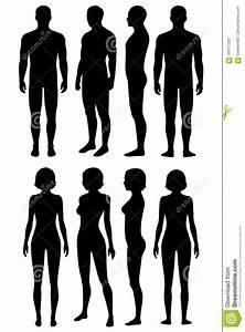 Body Cartoons  Illustrations  U0026 Vector Stock Images