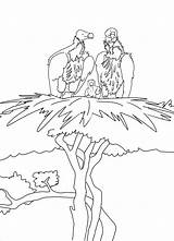 Albatross Coloring Baby Pages Moms Coloringbay sketch template