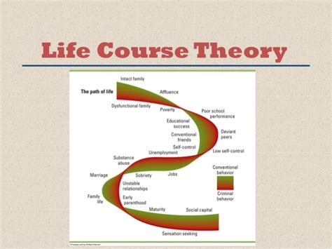 career development theories chapter 3 updated