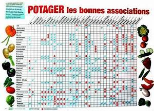 Plantes Amies Et Ennemies Au Potager : tableau de compagnonnage des l gumes dans votre potager ~ Melissatoandfro.com Idées de Décoration
