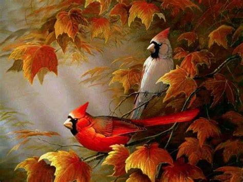 Free Fall Animal Wallpaper - free fall screensavers wallpapers wallpaper cave