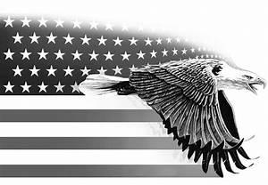 Bald Eagle Flag Black And White Bird