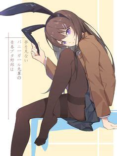 Do Not Dream of Rascal Senpai Bunny Girl