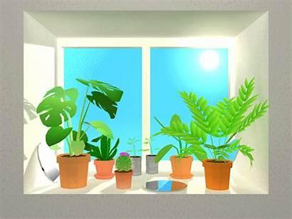 Ilmiah Penulisan Metode Matahari Cahaya Langkah Fotosintesis