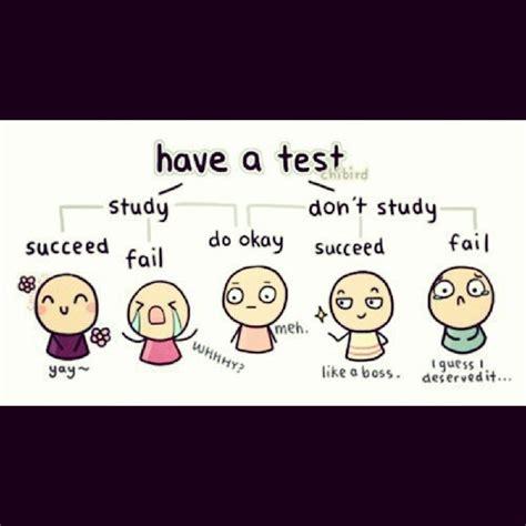 Math Test Meme - mathjoke haha math humor mathmeme meme joke test study habits fail succeed math funny