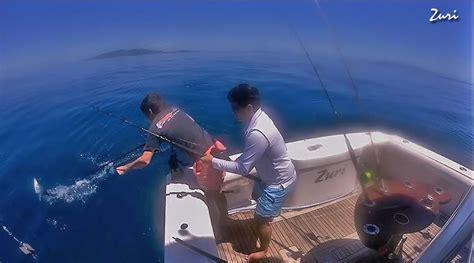 Fishing Boat Jobs Reddit by Black Marlin Blog Australian Marlin Fishing Reports