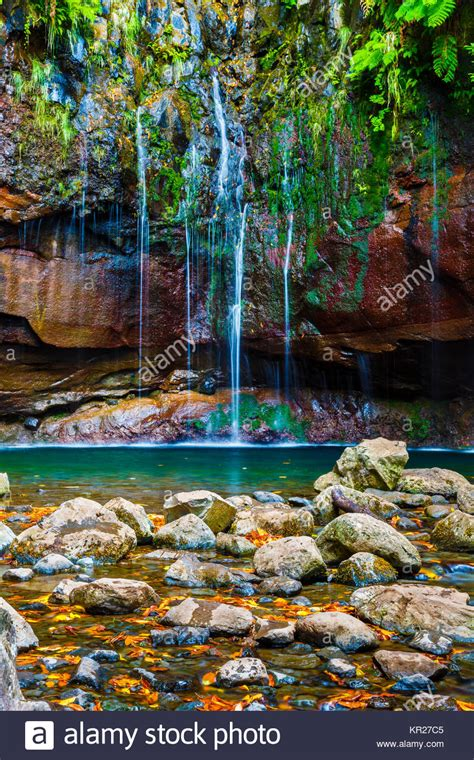 Madeira Levada Waterfall Stock Photos And Madeira Levada