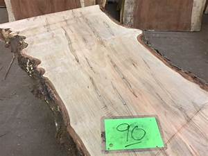 Ambrosia Maple Slab 90 Tropical Exotic Hardwoods