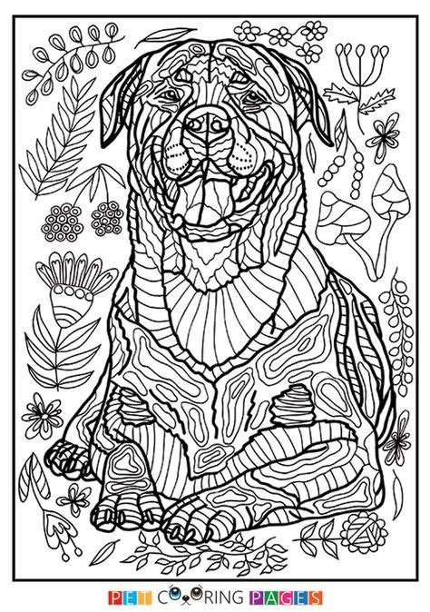 rottweiler coloring page hera  images dog