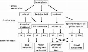 Genetic Causes Of Macroglossia Diagnostic Approach