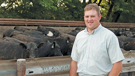 iowa producers part  cattle feeding increase  midwest