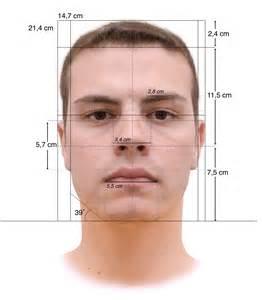 File:Face Measurements Lombroso's method.jpg - Wikimedia ...