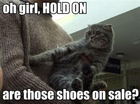 Funny Animals Are Even Funnier With These Captions (27 Pics