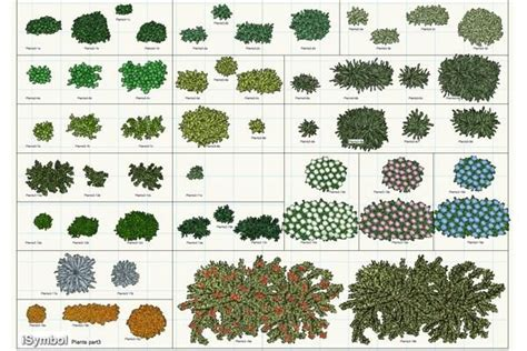 vectorworks plant  set  added   plants cactus plants garden planning