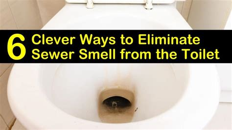 clever ways  eliminate sewer smell   toilet