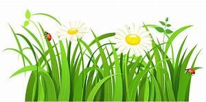 Free Grass Clip Art Pictures - Clipartix
