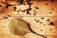Eliminer Les Moucherons : entretien de la maison c t maison ~ Nature-et-papiers.com Idées de Décoration
