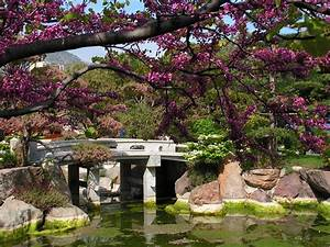 Japanese Garden Design Ideas for Your Home Garden Ideas