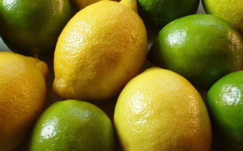 Lemon And Lime Wallpaper 42109 1920x1200 Px Hdwallsourcecom