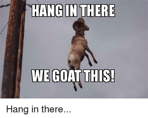 Hang In There Meme - hang in there we goat this goat meme on sizzle