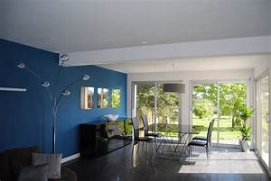 Peinture Salle A Manger : emejing decoration salon bleu canard contemporary ~ Dailycaller-alerts.com Idées de Décoration