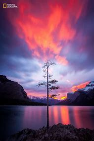 Nature Photographer National Geographic