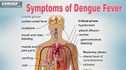 How to Recognizing Symptoms of Dengue Fever?(Nursing ...