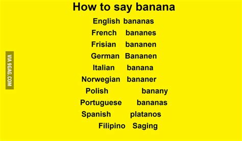 banana   language gag