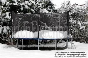 Trampolin Abdeckung Winter : trampolin aldi gartentrampolin bellicon mini trampolin erfahrungen test ~ Markanthonyermac.com Haus und Dekorationen