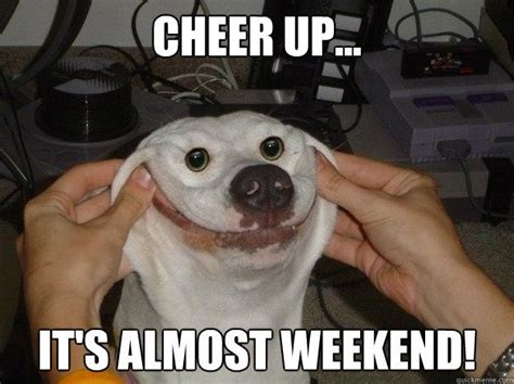 Happy Weekend Meme - cheer up it s almost weekend forced happy dog quickmeme lol pinterest happy dogs