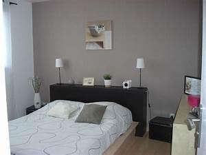 Peinture Pour Chambre Adulte : peinture chambre adultes couleur peinture chambre adulte ~ Dailycaller-alerts.com Idées de Décoration