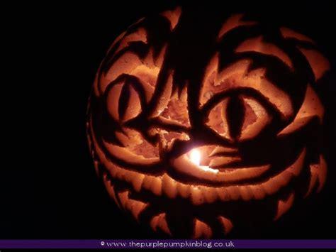 that fucking cat template halloween pumpkin carvings 2012
