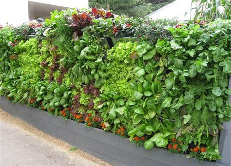vertical vegetable garden ideas total survival