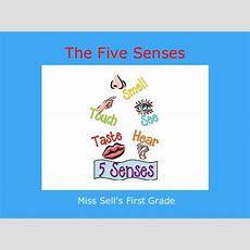 """the Five Senses""  Free Books & Children's Stories Online Storyjumper"
