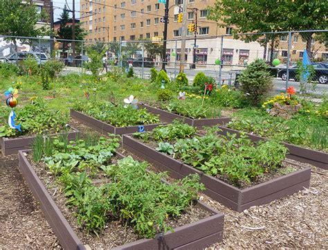 urban growing  gardening food policy