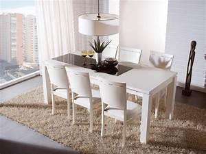 Tapis De Salle A Manger : tapis pour salle manger meuble oreiller matelas memoire de forme ~ Preciouscoupons.com Idées de Décoration