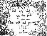Poem Adult Mary Oliver Coloring Hand Drawn Drawing Adults Getdrawings Summer sketch template
