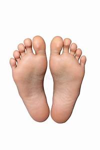 Pair Of Feet Stock Photo  Image Of Foot  White  Isolated