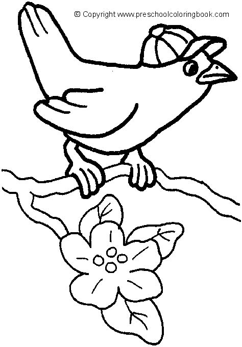 bird coloring pages for preschoolers www preschoolcoloringbook bird coloring page 711