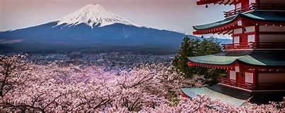 Fête de Hanami au Japon les cerisiers en fleurs