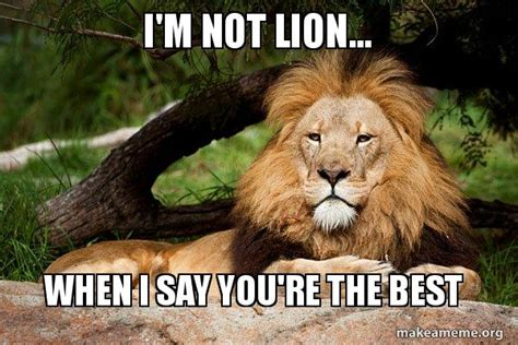 Your The Best Meme - i m not lion when i say you re the best contemplative lion make a meme