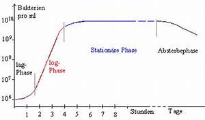 Exponentielles Wachstum Berechnen : bio repetitorium bakterien genetik ~ Themetempest.com Abrechnung