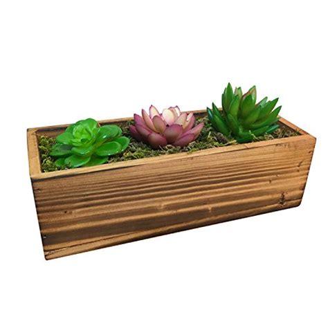plant box amazoncom