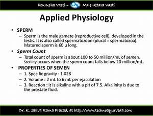 spermatozoon plural