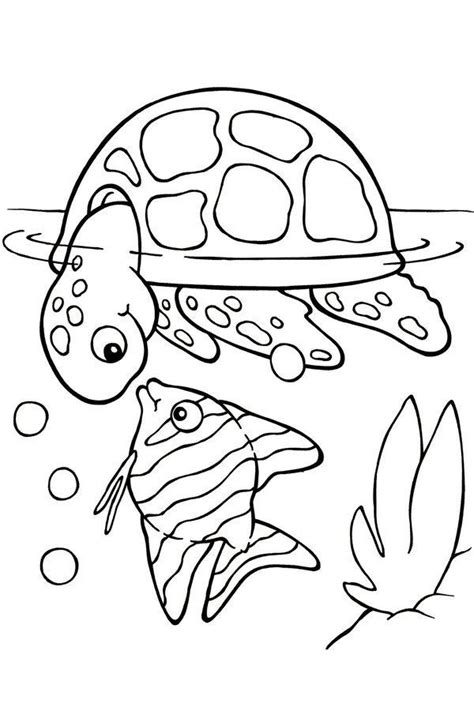 printable turtle coloring pages  kids picture