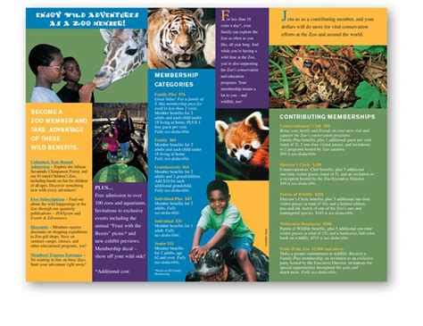 Zoo Brochure Template Costumepartyrun