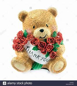 cute teddy bear couple holding red rose Stock Photo ...