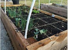 Square foot gardening Wikipedia